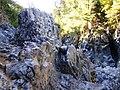 Roca basáltica del Río Claro en Radal Siete Tazas.jpg