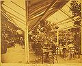 Roof Garden U.T. Blg- 1894.jpg