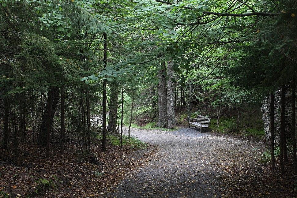 Roosevelt-Campobello-International-Park-Trail