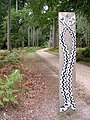 Route marker on the Snake Trail, Holidays Hill, New Forest - geograph.org.uk - 57405.jpg