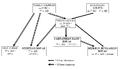 Rovas Script Family tree.png