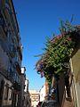 Rua das Salgadeiras (14216664749).jpg