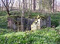Ruin in Carr Wood, Woodsome Lees, Farnley Tyas - geograph.org.uk - 392348.jpg