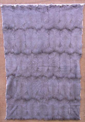 Siberian fur trade - Plate of squirrel fur backs