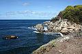 Saint Lucy, Barbados 20.jpg