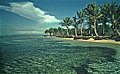 Sainte-Anne (Guadeloupe) - Flickr - sybarite48.jpg