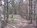 Salakas, Lithuania - panoramio (188).jpg