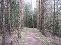 Salako sen., Lithuania - panoramio (211).jpg