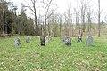 Salantai Jewish Cemetery 2016 (6).JPG