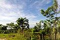 Samaná Province, Dominican Republic - panoramio (32).jpg