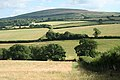 Sampford Courtenay, near Beer - geograph.org.uk - 207625.jpg