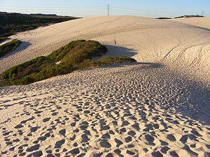 Kurnell, New South Wales - The Kurnell sand dunes