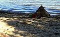 Sand hedgehog and disguarded buckets at the end of the day. - panoramio.jpg