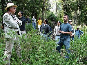 Forester - Foresters of Southern University of Chile in the Valdivian forests of San Pablo de Tregua, Chile.