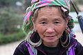 Sapa, Vietnam (5245926789).jpg