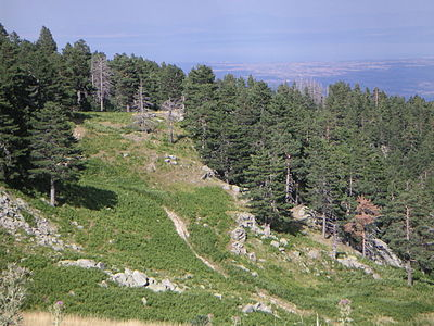 Sarakatsana, Pierian Mountains.jpg