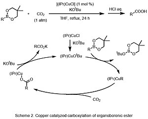 Carbonation - Scheme 2 Copper catalyzed carboxylation of organoboronic ester