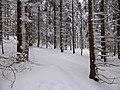 Schnee, Käsplatte.jpg