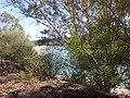 Sendero-embalse-de-Bornos P1420628.jpg
