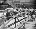 Servicemen's Liner - the British Troopship 'georgic'- Army Transport, Liverpool, Lancashire, England, UK, c July 1945 D25624.jpg