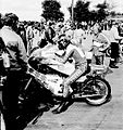 Sheene in paddock.jpg