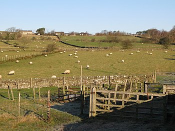English: Sheepfold