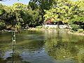 Shinjiike Pond of Munakata Grand Shrine (Hetsu Shrine) 4.jpg