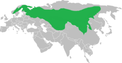 Siberian jay distribution.png