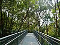 Singapore Southern Ridges Hilltop Walk 06.jpg