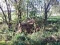 Slatiny - panoramio (17).jpg