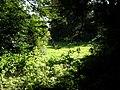 Smarmore, Co. Louth, Ireland - panoramio (6).jpg