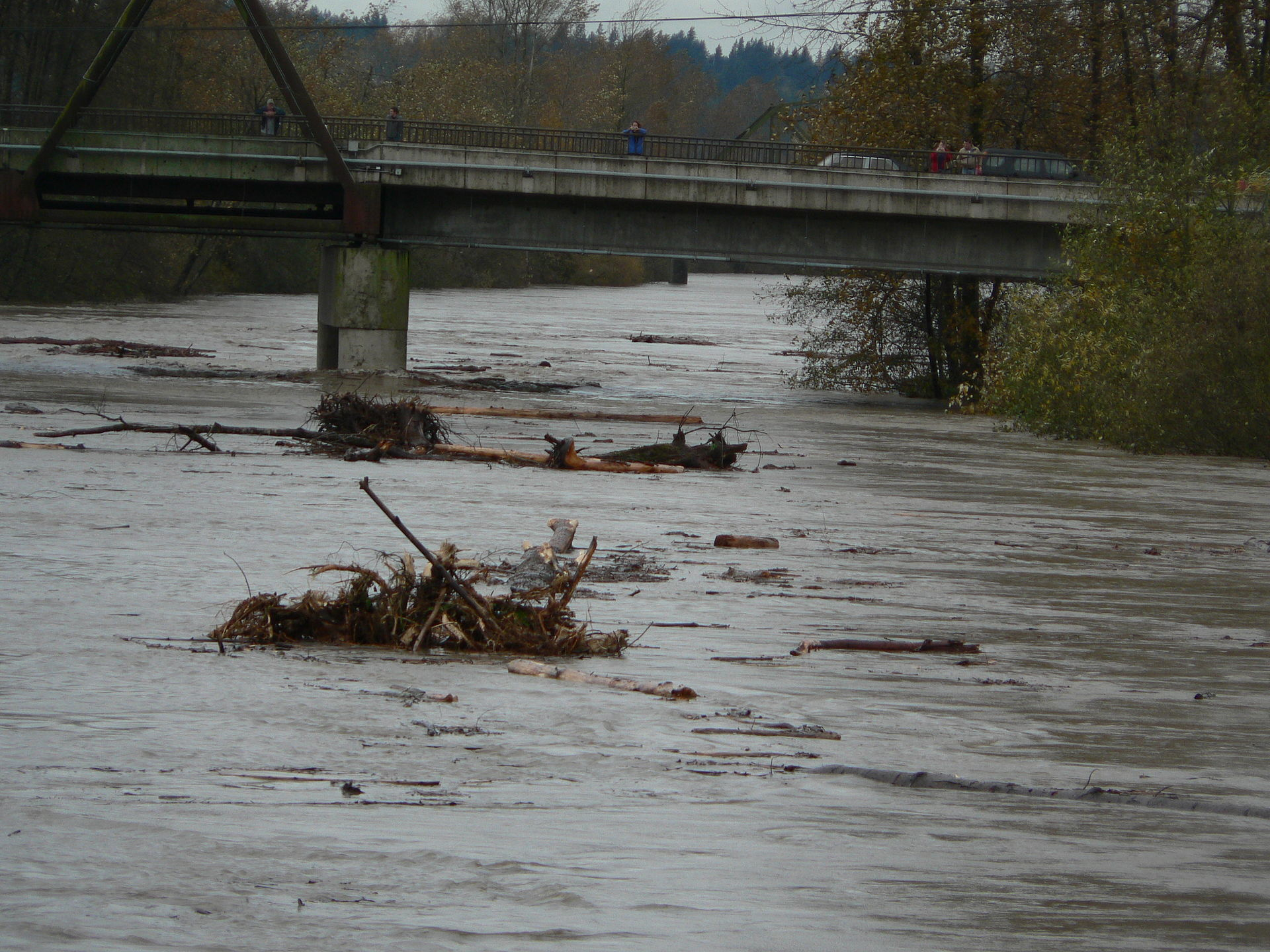 Climate change a threat to native fish save the trout for Snoqualmie river fishing