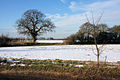 Snow-covered fields, Gulling Green - geograph.org.uk - 1154206.jpg