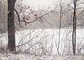 Snow (16462737913).jpg