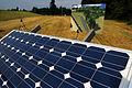 Solar panels (2929496063).jpg