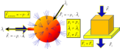 Solidos transmiten fuerzas Fluidos transmiten presiones.png
