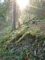 Sommerlicher Herbst Herrenstuhl - panoramio (21).jpg