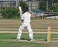 Southwater CC v. Chichester Priory Park CC at Southwater, West Sussex, England 060.jpg