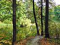 Spasskoye-Lutovinovo 37 (6968433546).jpg