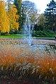 Spomenik prirode Dunavski park 04.jpg