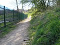 Spring Footpath - geograph.org.uk - 1005792.jpg