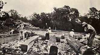 Mahogany - Mahogany loggers in Belize, around 1930