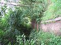 Staffordshire University Nature Reserve - panoramio - Neobright.jpg