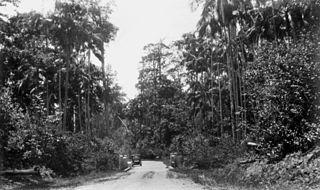 Forest Glen, Queensland Suburb of Sunshine Coast, Queensland, Australia