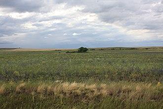 Sharlyksky District - Steppe landscape in Sharlyksky District