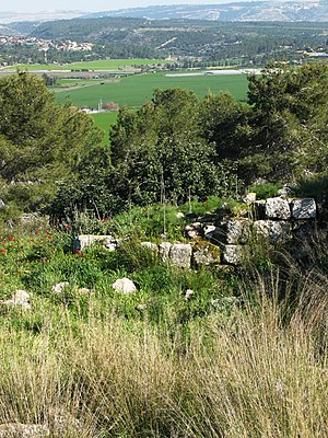 Sokho - Stone wall at Tel Socho, Elah Valley