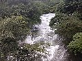 Stream flowing in Valparai Nature of Valparai IMG 20180714 173415965 BURST001.jpg