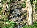 Stream in Robbs Dene - geograph.org.uk - 396601.jpg