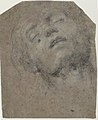 Study of a Head MET 1972.118.275.jpg