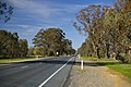 Sturt Highway - Forest Hill.jpg